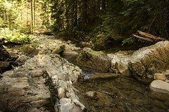 Fresh water (Miksi992) Tags: canon d600 waterfall nature fresh river mountain soil rock bosnia vlasic outdoor landscape water riverbed creek stream ugar ugric watercourse