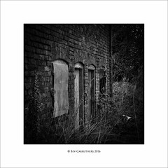 the abandoned.... (bevscwelsh) Tags: abandoned derelict house garden sonya700