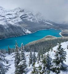 Peyto Lake (jan_bo) Tags: banffnationalpark banff winter lake rockymountains peytolake peyto