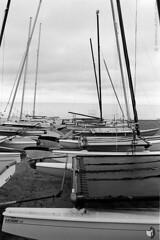 Film photography: Sailboats at Dawn - Gencoe Beach, Chicago, IL  (NFE_0174) (masinka) Tags: boats sailboats beach glencoe il chicago illinois lake michigan film analog kodak trix 400 nikon fe lakeshore shoreline dawn morning cloudy xtol plustek opticfilm etbtsy