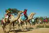 Maralal Camel Derby (84 of 93) (weldonwk) Tags: kenya camel deby maralal