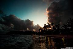 Sunset on the beach /    (Kochum) Tags: srilanka beach night sunset cloudsstormssunsetssunrises clouds ocean palms        indianocean nikon nikkor1870 d90 1870