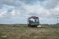 At the End (MNP[FR]) Tags: landscape island clouds cloudscape bus sheep samsung 2016 paysage mouton nuage wrecked lewis harris scotland pave ecosse nx1 lewisandharris