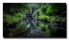 River Teign (jeremy willcocks) Tags: riverteign devon uk england colour woods dartmoor water river trees reflections slowshutter green jeremywillcocks wwwsouthwestscenesmeukfujixt10 xf1024mm