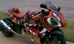Custom Paint Spyder Motorcycle Tiger Motorcycle Custom Paint