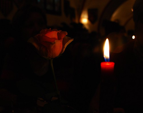 Una luz y una flor. 38º Aniversario. A light and a flower. 38 th Anniversary.