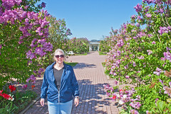 In the Hulda Klager Lilac Gardens (Dave In Oregon) Tags: flowers garden spring walk canon20d lilacs woodlandwashington huldaklagerlilacgardens