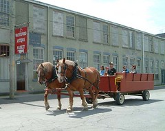 may1312 (waterfordguy) Tags: horses ontario fall wagon ride antiques waterford