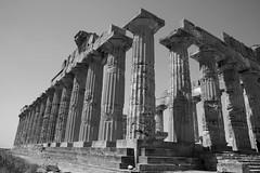 703Selinunte (queulat00) Tags: italia sicilia selinunte greektemple templosgriegos