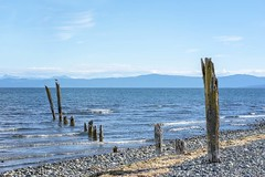 Midday at Qualicum Bay (ScarletBlack) Tags: qualicumbay qualicum qualicumfirstnationscampground sea seaside oldpier seagull waves blue ocean oceanview