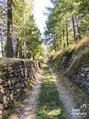 Via Francigena della Valle di Susa (gabriferreri) Tags: via francigena cammino camminare trekking hiking italia italy walking susa cesana oulx solomiac rocciamelone seguret montagna alpi alps ponte tibetano san gervasio gorge gole