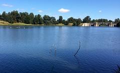 Lake and bridge at Blenheim Palace (Dave_S.) Tags: blenheim palace woodstock oxfordshire england united kingdom great britain uk gb english british capability brown landscape garden duke marlborough