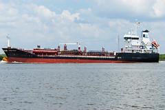 SAMUS SWAN (Matt D. Allen) Tags: tanker houstonshipchannel shipspotting maritime