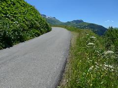 P1000367 (cyclingup.eu) Tags: bike cycle climb rad fahrrad aufstieg steigen fietsen klimmen cyclisme vlo grimper col du joly