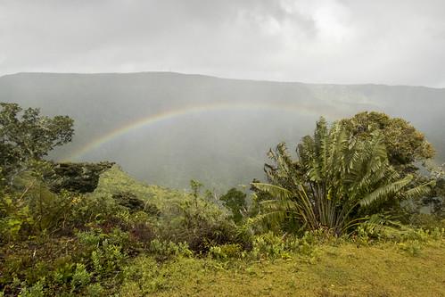 Black river gorge national park, Mauritius