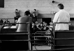 At the mart... (2c..) Tags: mart farmers interior ireland 2c 2cimage kildare 1988 people