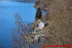 Nordfjord - Lote (soyouz) Tags: geo:lat=6185995465 geo:lon=610019190 geotagged henne lote nor norvge sognogfjordane fjord nordfjord norvegela