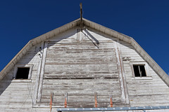 Face the Barn (Uncharted Sights) Tags: brighton colorado abandoned urbex urban exploration canon 80d 24mm 28 prime portrait explore outdoors farm barn forgotten adventure uncharted sights discover decay rurex old