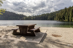Exploring the Tricities (jennchanphotography) Tags: coquitlam poco portmoody tricity tricities jennchanphotography bc explorebc nature neighbourhood