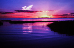 Infrared Sunset (Markus Jork) Tags: leica m3 summicron 50mm aerochrome colorir slide film fpp sunset capecod bay water ocean