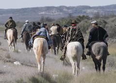 Camino a Chimpay (alvama3) Tags: caballo peregrino rio negro ceferino chimpay namuncura beato ruta peregrinacion gaucho argentina