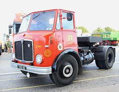 AEC Mercury Reynor Transport YDD46 Frank Hilton IMG_9264 (Frank Hilton.) Tags: erf foden atkinson ford albion leyland bedford classic truck lorry bus car