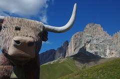 Verso il Sassopiatto (MarioLaser) Tags: montagna baita rifugio val di fassa dolomiti