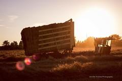 (dreamer56horses) Tags: farmmachinery farmequipment country straw farm