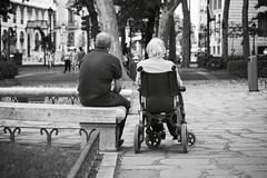 Madrid. 2014. (Jose_Prez) Tags: madrid blancoynegro byn bw blackwhite anciano cuidar amor respeto street streetphoto urban responsabilidad