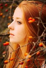 Autumn (Gaia Li Mandri) Tags: girl redhead red orange hair long blonde ligh blue eyes bacche berries warm model serius young woman nature bush leaves straight vsco preraphaelite preraffaellita