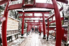_VTR4638 (Vitor Nakaba) Tags: winter cold temperature japan torii japanese culture
