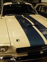 Shelby9-23-16_017 (Puckfiend) Tags: shelby cobra lasvegas carrollshelby cars automobile