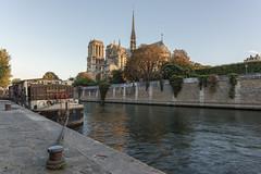 Nouvelle Seine (pourkoiaps) Tags: 1424mmf28afs architecture cathedrale eau france hdr laseine monument nikond750 nouvelleseine paris paysageurbain quaideseine