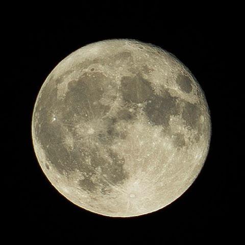 Esta noche tú eres mía!  #desdemiventana #lunallena #moon #moonshot #belgique #athbelgium #ath #arbre #fullmoon #belgica #luna