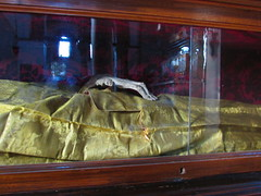 Mummified saint on display at Church of Santa Maria e San Donato in Murano (Lacey Jo) Tags: venice italy church santa maria san donato murano saint mummy hand relic