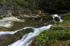 Linn (Miksi992) Tags: canon d600 nature fresh water river stream creek mountain soil rock bosnia vlasic outdoor landscape waterfall linn ugar ugric