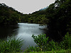 DSCN0016 Swan Lake of Green World (tsuping.liu) Tags: outdoor nature natureselegantshots naturesfinest landscape lighting lake water photoborder passion perspective photographt serene shadow