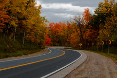 Fall Leaves in Holland Landing (DDB Photography) Tags: fall autumn trees tree leaf leaves color colour colours colors road winding landscape pavement asphalt sky cloud clouds nature