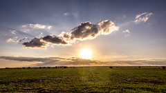 Sedonna sunrise (ing.nechevarria) Tags: airelibre nube cielo puestadesol paisaje campo countryside sunset landscape grass green cloudscape outdoor clouds