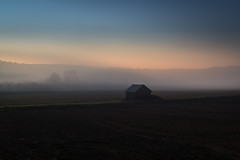 Alone in the mist! (PixPep) Tags: mist koppom alone arvika vrmland sverige sweden pixpep landscape nature blue sunset