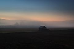Alone in the mist! (PixPep) Tags: mist koppom alone arvika vrmland sverige sweden pixpep landscape nature blue sunset