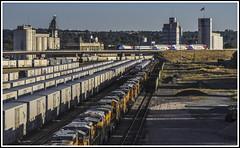 Sign of the Times (Jim the Joker) Tags: ogden railroad yard unionpacific storedlocomotives utahtransitauthority uta motivepowerindustries mp36 bombadier bilevelstock railway train