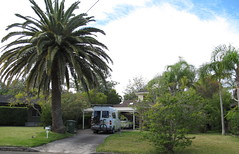 A favourite campspot for many years (spelio) Tags: campsite driveway frontyard garden letterbox palm tree janes