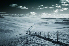 fence line (Jon Downs) Tags: uk blue sky cloud white black color colour green art colors field clouds digital canon fence downs landscape ir creativity photography eos grey photo jon flickr artist colours photographer image united gray creative picture kingdom pic line photograph infrared friday fenced avebury fenceline hff 400d fencefriday jondowns fencedfriday