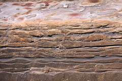 Point Lobos Seashore/like a fine fabric (LOLO Italiana) Tags: ca beach nature stone landscape sandstone rocks crab pebbles pacificocean kelp carmel abstracts centralcoast seashore pointlobos harborseals