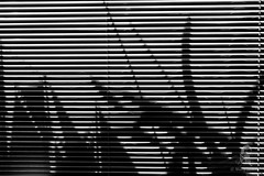 Shadow play (Dinosoldier) Tags: shadow abstract macro monster canon lens eos aluminum sailing ship play blinds 60mm f28 attacking 1000d