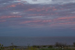16071618 Newcastle (Philip D Ryan) Tags: ireland countywicklow newcastle irishsea skyscape cloudscape eveninglight sunset newcastlebeach seascape