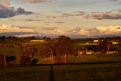 Kangaroo Ground, Australia (gazrad) Tags: agriculture blurredbackground building cloud colour country dawn dusk evening farm field horizontal landscape morning nobody paddock pasture rural sunrise sunset yarravalley kangarooground