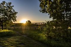 20160824_Obersee-24 (www.arternative-design.com) Tags: bielefeld d810 landschaftsfotografie liebefeld nikkor nikon nikond810 owl obersee ostwestfalen ostwestfalenlippe sonnenuntergang tamron tamron1530 vieadukt weitwinkel landscape landscapeporn sundown sunset