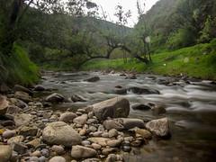 Naturaleza (Oscar_Santiago) Tags: larga exposicin